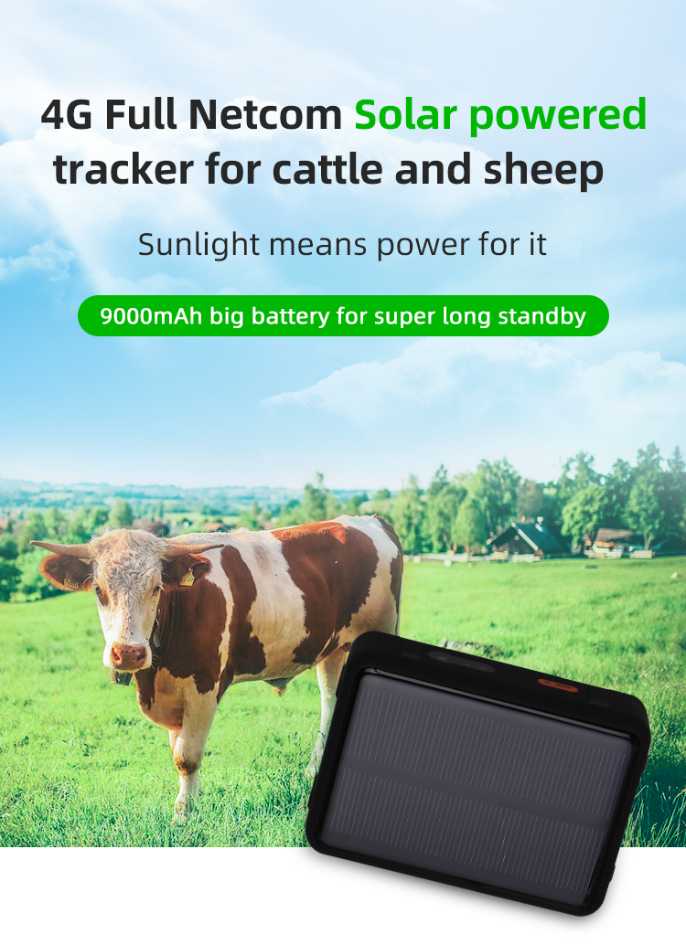 The High Quality Cheap  4G long Battery RF-V44 CowGPS Tracking Device For Temperature Accuracy And Solar Power Waterproof Real-time GPS Tracking System Made In China Factory